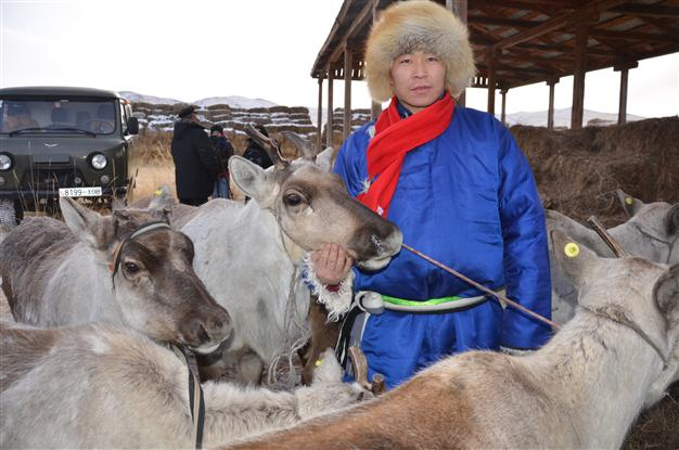 Turkey's cooperation agency delivers reindeers to Dukha Turks as New Year's gift